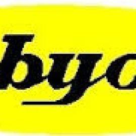 PT, RUBYCON